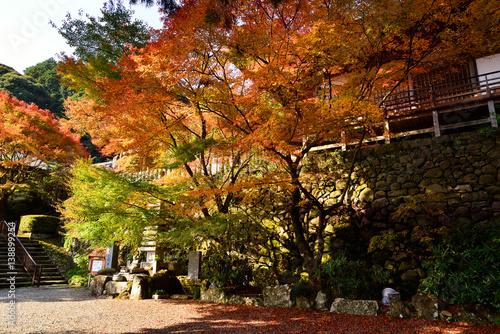 Keuken foto achterwand Begraafplaats 両子寺の紅葉