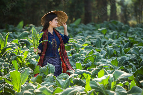 Laos women beautiful portrait farming concept tobacco field thailand is tobacco farm of asian at mekong river side Nongkhai,Thailand Canvas Print