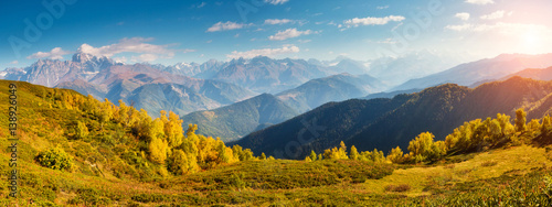 Canvas Prints Honey beautiful autumn landscape