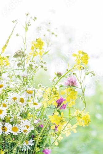 bukiet-dzikich-kwiatow