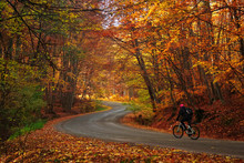 Man Riding A Bike On A Curved Road In Autumn Scenery