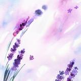 Akwarela ręcznie malowane kwiaty lawendy na białym tle. Zaproszenie. Kartka ślubna. Kartka urodzinowa. - 138935851