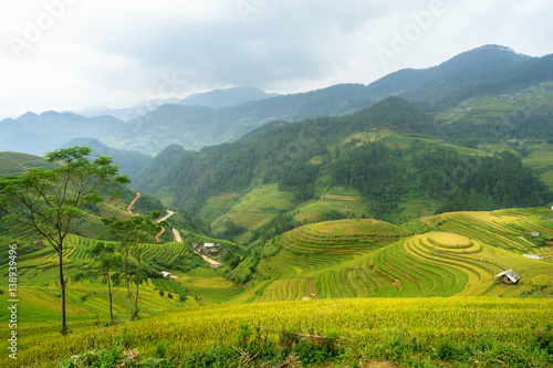 Foto auf Gartenposter Reisfelder Rice fields on terraced of Mu Cang Chai, YenBai, Rice fields prepare the harvest at Northwest Vietnam. Vietnam landscapes.