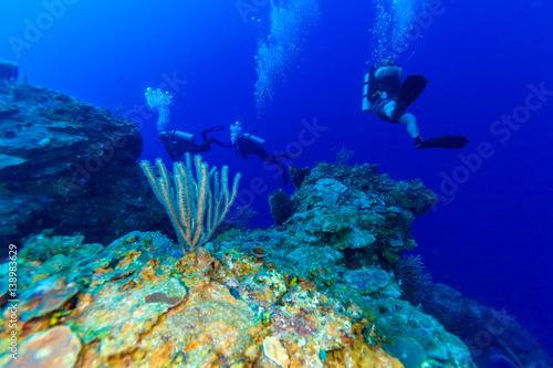 Underwater scene with three scuba divers