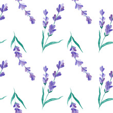 Watercolor Vector Pattern With...