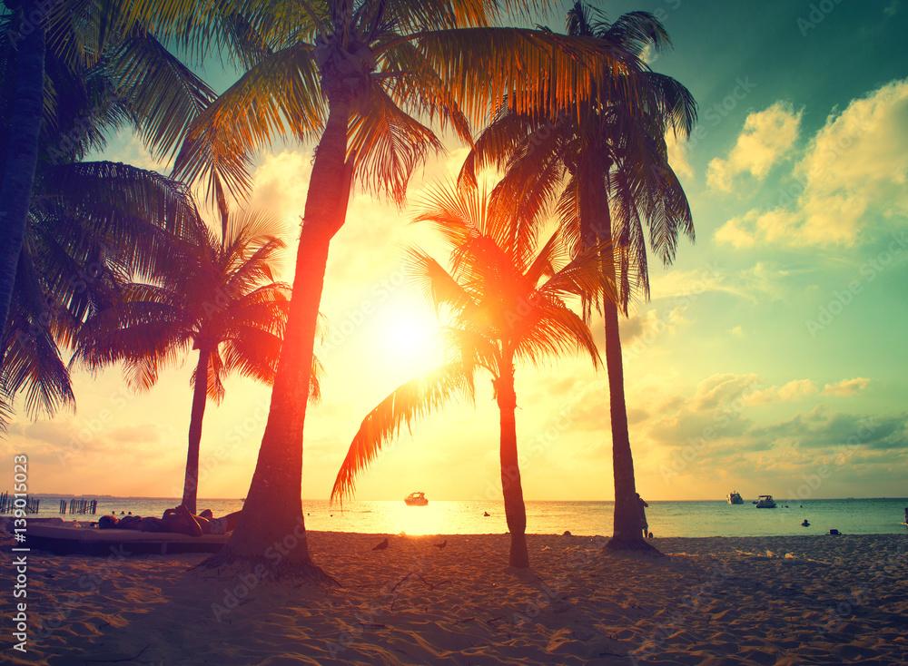 Foto-Schiebegardine Komplettsystem - Sunset beach with palm trees and beautiful sky. Paradise scene of Caribbean Island
