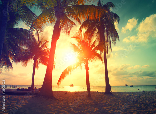 Foto-Kissen - Sunset beach with palm trees and beautiful sky. Paradise scene of Caribbean Island (von Subbotina Anna)