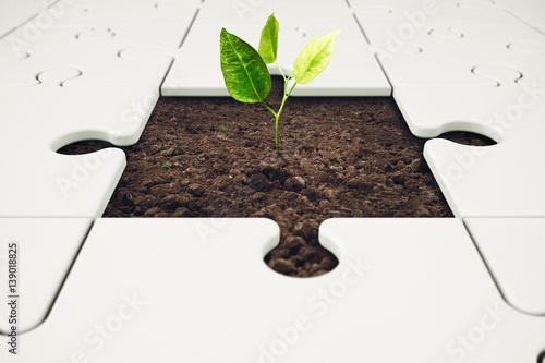 Fototapeta Growth and development through teamwork obraz