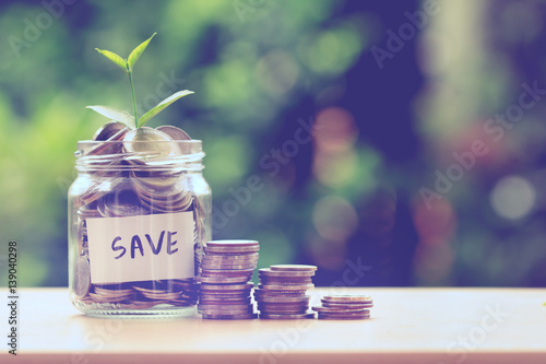 Fotografía  Plant growing  in Coins glass jar for money saving and investment financial conc