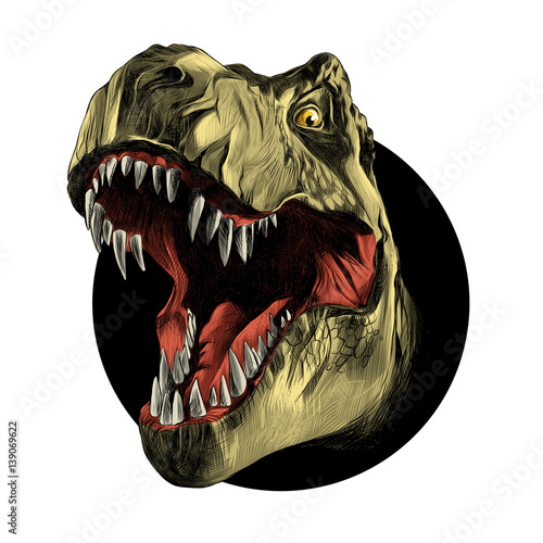 Photo  dinosaur head sketch vector color drawing