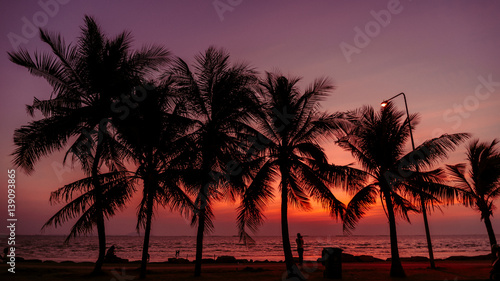 Silhouette of coconut tree with Twilight sunset at the beach
