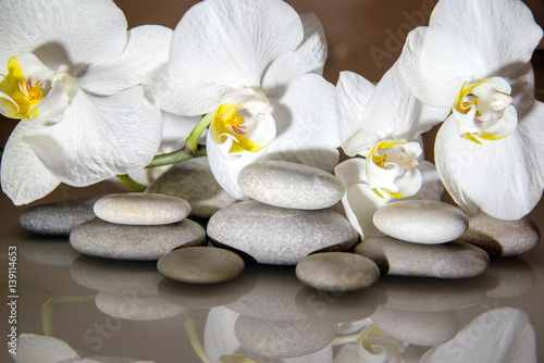 Poster de jardin Orchidée flat stones on a white glass on the background of white orchids