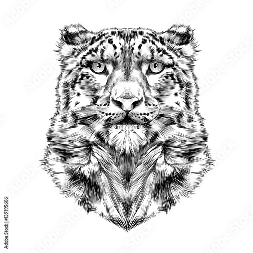 Photo sur Toile Croquis dessinés à la main des animaux the head of the snow leopard, full face, symmetry, black and white drawing, sketch, vector, graphics
