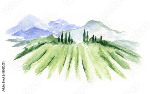 Poster White Abstract landscape with vineyard / Watercolor illustration, mountain landscape with fields