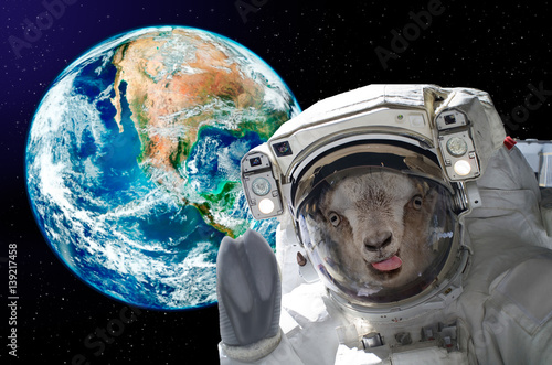 Portrait of a goat astronaut, showing tongue, in space on a