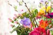 canvas print picture - Bunte Fruehlingsblumen