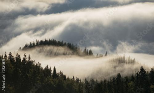 widok-na-wzgorza-pokryte-poranna-mgla