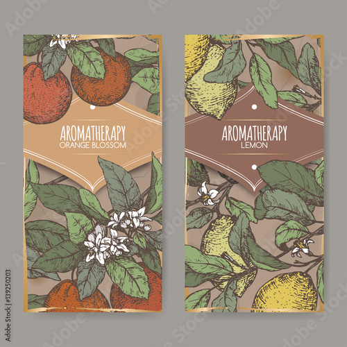 Staande foto Lelietje van dalen Two labels with color Orange blossom and lemon sketch.