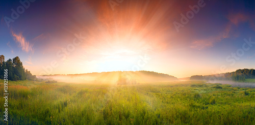 Fotografie, Obraz  landscape with the sunrise, a blossoming meadow and fog,panorama