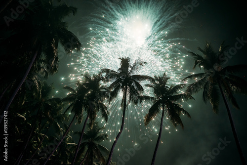 Palm trees background with colourful fireworks