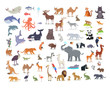 Big Set of World Animal Species Cartoon Vectors