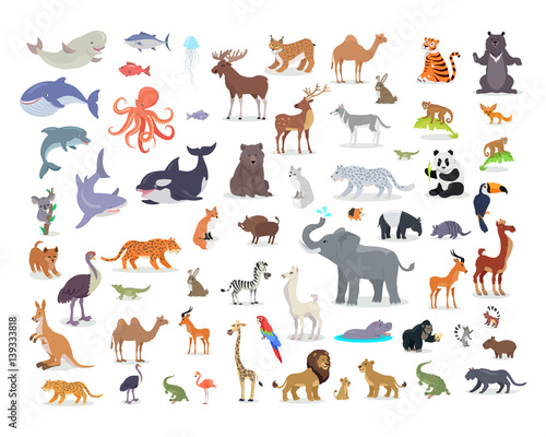 Photo  Big Set of World Animal Species Cartoon Vectors