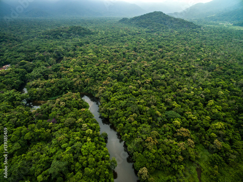 Photo  Aerial View of River in Rainforest, Latin America