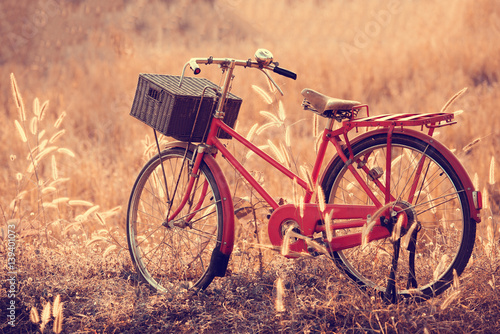 Fotobehang Fiets beautiful landscape image with Bicycle at summer grass field.classic bicycle,old bicycle style for greeting Cards ,post card