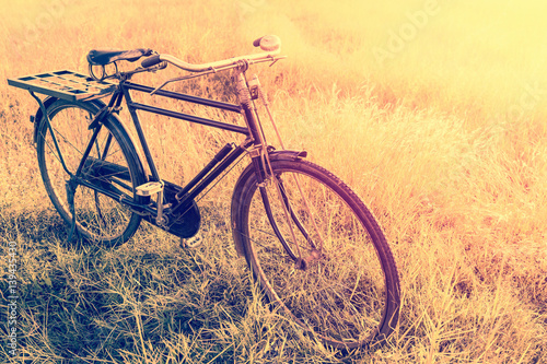 Fotobehang Fiets Landscape picture Vintage Bicycle with Summer grass field at sunset ; vintage filter style.classic bicycle,old bicycle style for greeting Cards ,post card