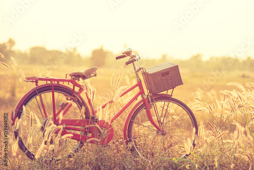 beautiful landscape image with Bicycle at summer grass field Wallpaper Mural