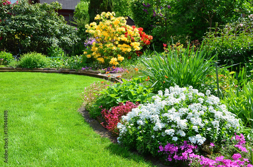 Poster Jardin beautiful garden with lawn