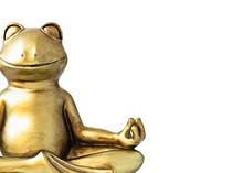 Buddha Frog Meditating In Lotus Pose On White