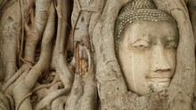 Buddha Head Embedded In A Banyan Tree. Wat Wat Maha That, Ayutthaya. Slider Stock Footage.