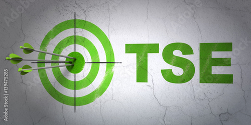Fotografie, Tablou Stock market indexes concept: target and TSE on wall background