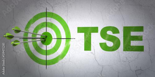 Fotografia, Obraz Stock market indexes concept: target and TSE on wall background