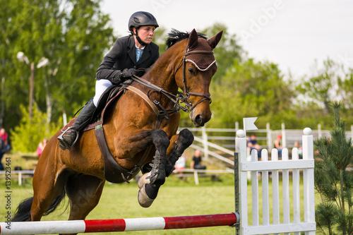 Fotografía horse jumping