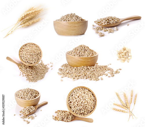 Foto Ear of barley sets on white background.