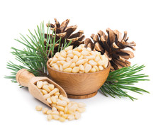 Pine Nuts With Branches And Cones Isolated On White