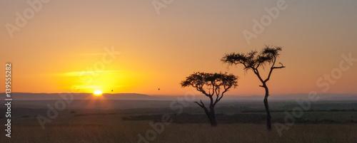 Photo Alba in Kenya