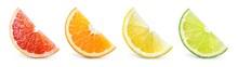Citrus Fruit. Orange, Lemon, Lime, Grapefruit. Slices Isolated On White Background. Collection.