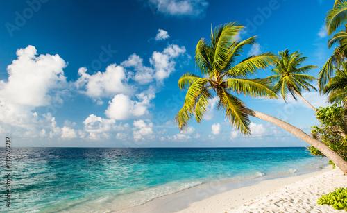 Samotna plaża na Malediwach