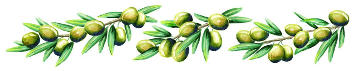 Panel SzklanyOlive branch horizontal. Watercolor