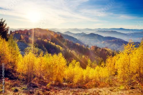 Tuinposter Purper Majestic autumn landscape