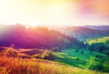 Fototapeta Inspiracje na lato Summer sunset in mountains