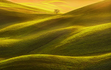 Tuscany Panorama, Rolling Hill...