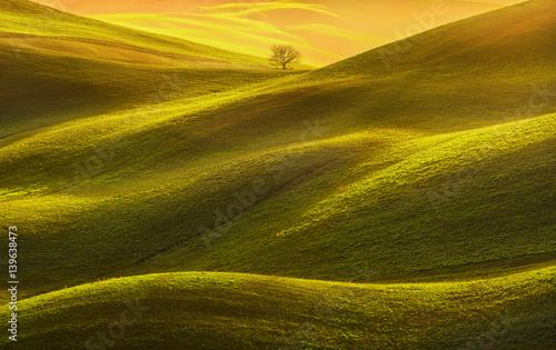 Obraz na płótnie Tuscany panorama, rolling hills, fields, meadow and lonely tree