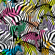 Zebra With Colorful Silhouette...