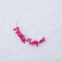 Quadrant Pink Flower Frame Of ...