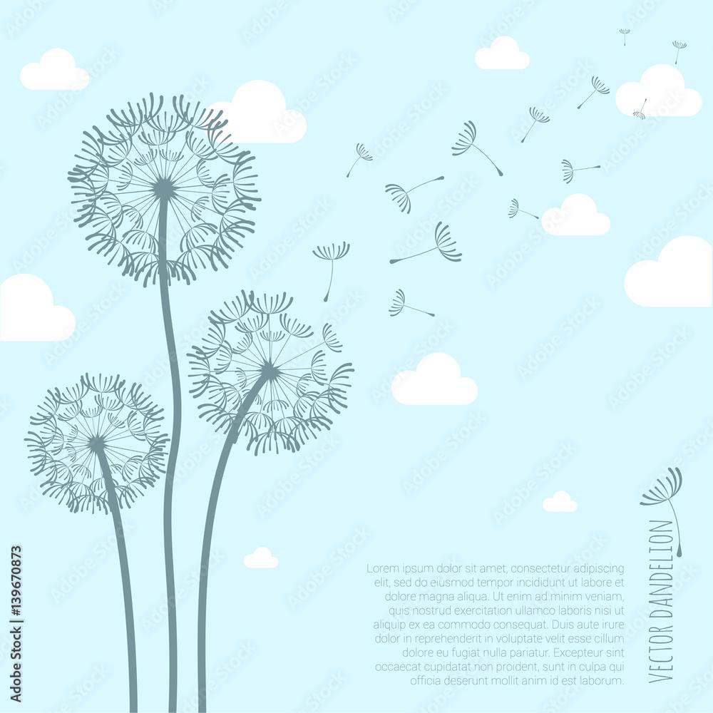Fototapety, obrazy: Vector dandelion silhouette