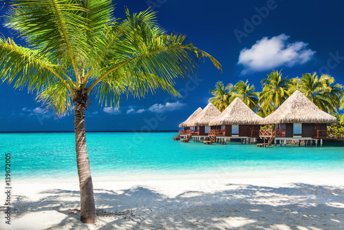 Staande foto Strand Over water bungalows on a tropical island with palm trees and amazing beach
